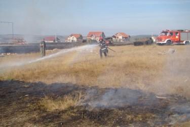 A dat foc vegetaţiei uscate şi a aprins grajdul