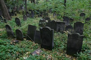 Peste 33.000 de morţi, înregistraţi în ultimii 10 ani