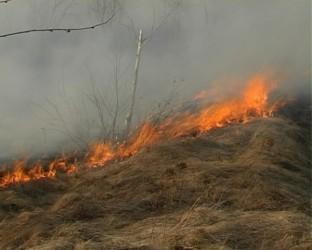 Incendii înteţite de vânt, pe miriştile sălăjenilor