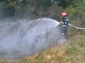 Incendiu în pădurea din Sânpetru Almaşului