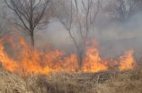 Cauza arderilor necontrolate – sălăjenii certaţi cu bunul simţ