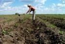 Aproape 200 milioane de lei pentu dezvoltarea rurală a Sălajului