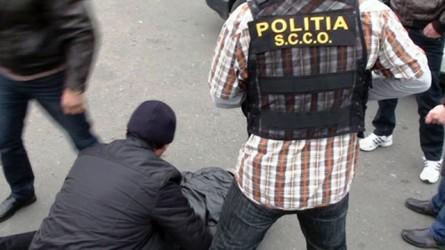După ce au vândut cannabis în Sălaj şi Maramureş, traficanţii de droguri sunt lăsaţi în libertate