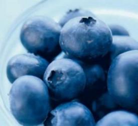 Direcţia Silvică a exportat fructe de pădure de 400.000 de lei