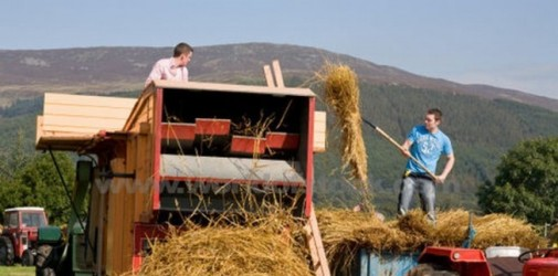 Tinerii fermieri riscă să rămână fără banii europeni