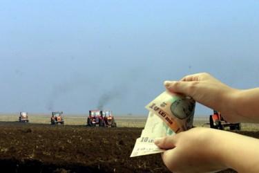 APIA eliberează adeverinţe pentru credite agricole