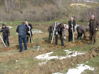 Au fost plantaţi 2.500 de puieţi în prima zi a campaniei