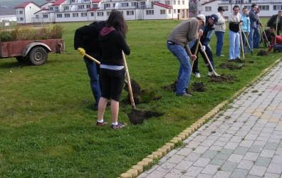 Elevii zălăuani, preocupaţi de spaţiile verzi din municipiu