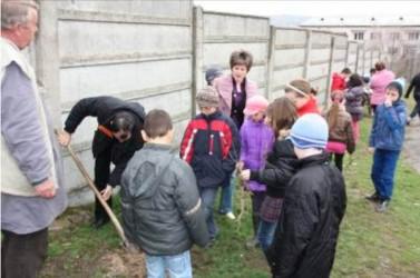 """""""Şcoala Altfel"""" – o provocare """"verde"""" pentru tânăra generaţie"""