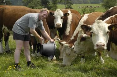 Noi ajutoare pentru fermieri