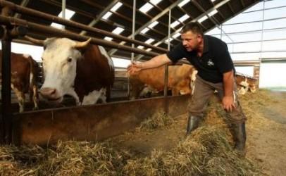 Fermierii sălăjeni cer aproape 4 milioane de euro pentru investiţii