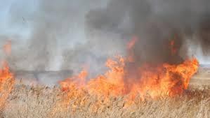 A început sezonul incendiilor de vegetaţie