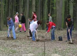 Elevii sălăjeni, implicaţi în protejarea naturii