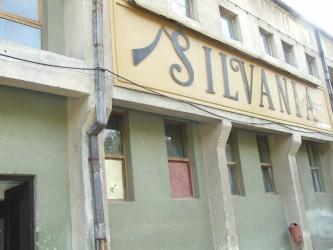 Fabrica de vin spumant din Şimleu, vândută unei firme de prelucrare a pietrei
