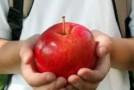 """Sălajul primeşte 535.000 de lei pentru """"Fructe în şcoli"""""""