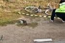 Biciclist rănit grav în Vîrşolt