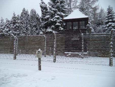 Nu avem voie să uităm! Mii de evrei din Sălaj au fost deportaţi la Auschwitz