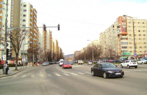Spălarea străzilor cu detergent ne-ar scăpa de multe neplăceri şi boli