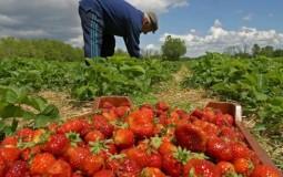 Muncitorii zilieri vor câştiga mai mult