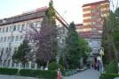 Încep lucrările de reabilitare a Ambulatoriului Spitalului Judeţean