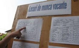 Se fac angajări: 138 de locuri de muncă disponibile în Sălaj