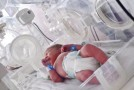 Incubatoare noi pentru maternităţile din Şimleu şi Zalău