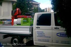 Primăria Zalău a declanşat atacul împotriva muştelor şi ţânţarilor