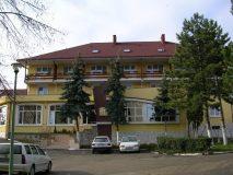 Un investitor local a cumpărat Hotel Meseş