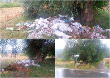 Opinia cititorului: Munţi de gunoaie lângă Jibou