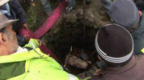 Hășmaș: pompierii au salvat un bivol căzut într-o fântână