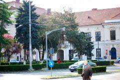 Cu un deget de praf adunat pe el, fotoliul de administrator public al Zalăului este scos la concurs
