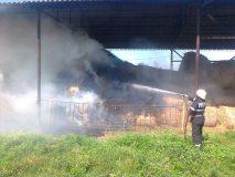 Incendiu provocat de doi copii, la Prodăneşti