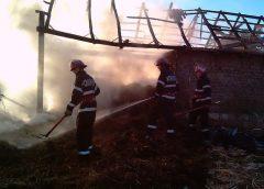 Tone de plante furajere distruse în incendiu