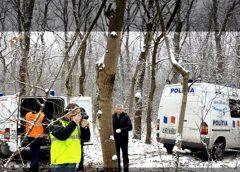 Șocant! Plin de mușcături și înghețat, un sălăjean și-a găsit sfârșitul la marginea unei păduri