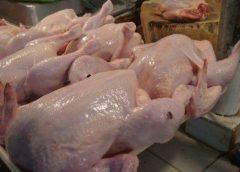 Carne de curcan infestată – distribuită în unități de desfacere din județul vecin